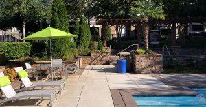 planting palm tree near pool