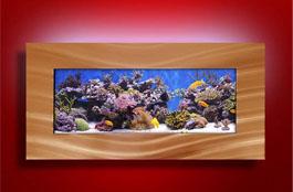 wall mounted aquarium for beach home